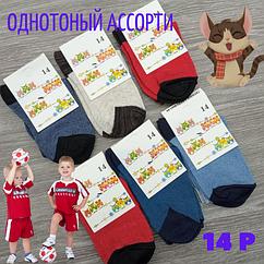 Носки детские демисезонные 14р цветное ассорти 30031514