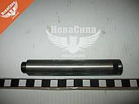 Палец ушка передней рессоры (Турция) Эталон BG-008