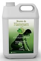 Ароматизатор для хамаму Brume de Hammam Евкаліпт/М'ята, 5 л