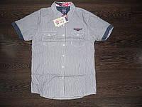 Мужская рубашка Glo-story