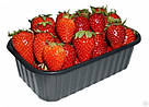 Пластиковый судок для упаковки ягод 1 кг ПЭТ черный, фото 2