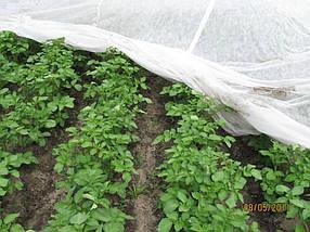 Агриспан 30 білий 12,65*50, фото 2
