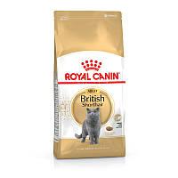 Royal Canin British Shorthair Adult 4 кг корм для Британских короткошерстных кошек от 1 года