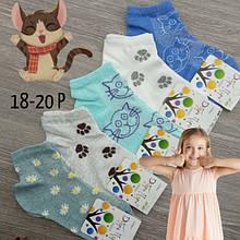 Шкарпетки дитячі літні з малюнками для дівчинки, ДОБРА ПАРА, Р18-20, випадкове асорті, 30031540