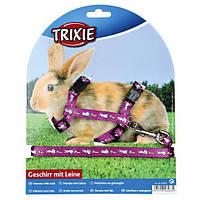 Шлейка с поводком для кролика 10мм/1.20м, окружность: 25-44 см, нейлон с рисунком