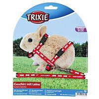 Шлейка с поводком для кроликов 20-33 см /8мм/1.20м, нейлон с рисунком