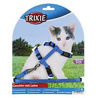 Шлейка для котят 19-31 см/ 8 мм х 1,20 м (4 цвета), фото 1