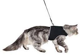 Шлейка м'яка з повідцем для кішок, 24-42 см, 1,20 м (2 кольори)