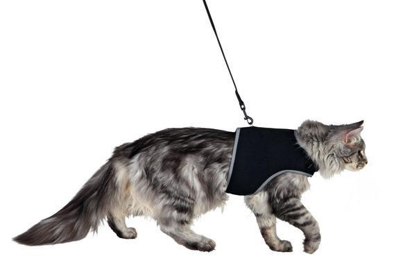 Шлейка м'яка з повідцем для кішок, XL, 36-54 см, 1,20 м, чорний