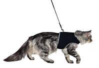 Шлейка мягкая с поводком для кошек, XL, 36–54 см, 1,20 м, чёрный