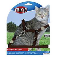 Шлейка з повідцем для кішки Premium, нейлон 26-37см / 10мм х 1,20 м (4 кольори), фото 1