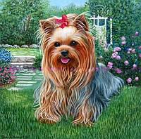 Картина для рисования камнями стразами Diamond painting Алмазная вышивка щенок йоркширский терьер