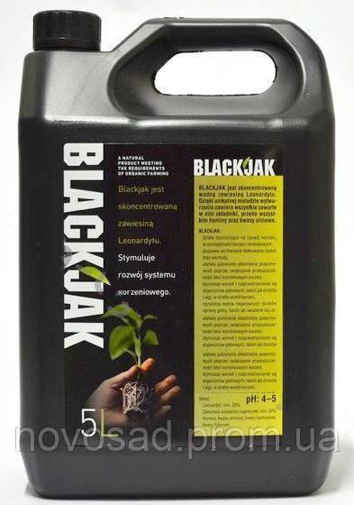 stimulyator-black-jacks