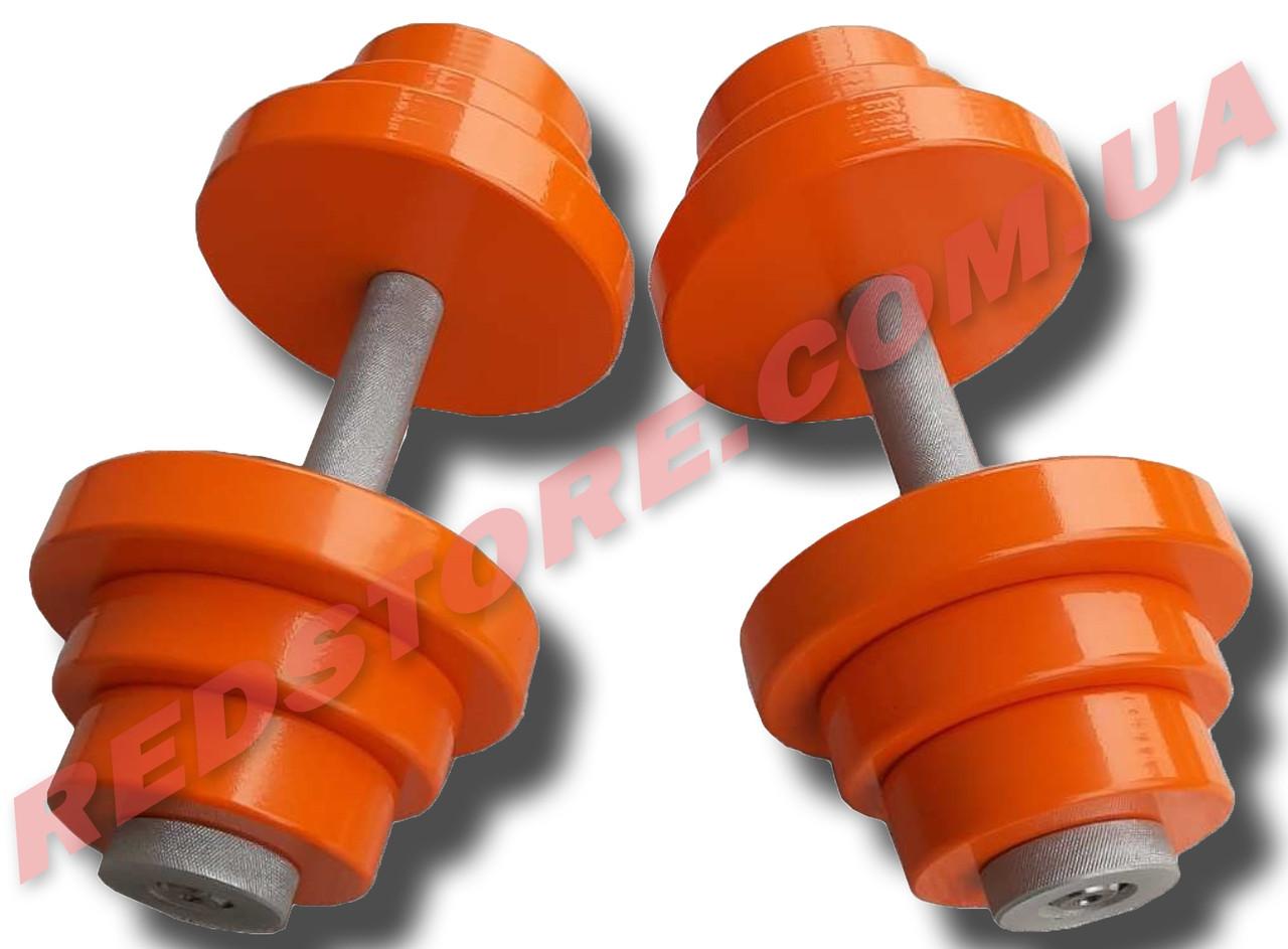 Гантели наборные 2 по 22 кг металлические с полимерным покрытием (общий вес 44 кг) разборные