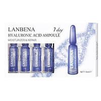 Сироватка з гіалуроновою кислотою в ампулах Lanbena (1.5x7), для особи