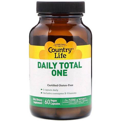 Мультивитамины для Взрослых с Железом, Daily Total One, Country Life, 60 желатиновых капсул, фото 2