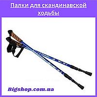 Палки для скандинавской ходьбы NORD STICKS телескопические синие, палки для трекинга