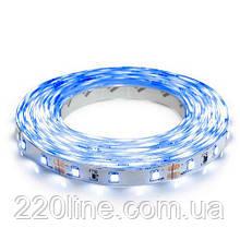 Светодиодная лента OEM ST-12-2835-60-B-20 синяя, негерметичная, 1м