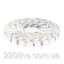 Светодиодная лента OEM ST-12-2835-60-CW-65 белая, герметичная, 1м