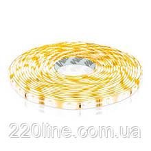 Светодиодная лента OEM ST-12-2835-60-WW-65 теплая белая, герметичная, 1м