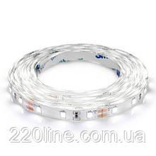 Светодиодная лента BIOM Professional BPS-G3-12-2835-60-CW-20 белый, негерметичная, 1м
