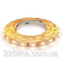 Светодиодная лента BIOM Professional BPS-G3-12-2835-60-WW-20 теплый белый, негерметичная, 1м
