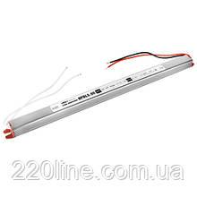 Блок питания BIOM Professional DC24 60W BPBLS-60-24 2.5А stick