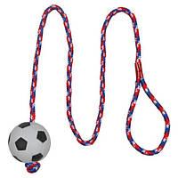 Іграшка для собак м'яч на мотузці, 100 см, 6 см