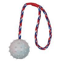 Іграшка для собак м'яч на мотузці, 30 см, 6 см