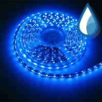 LED 5630 B светодиодная лента, синяя