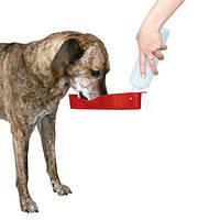 Бутылка дорожная для собаки, 700 мл, пластик