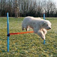 Набор для аджилити Trixie Jump 1,29м х 1,15м