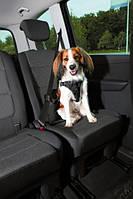 Шлейка к ремню безопасности в автомобиль, L: 65–80 см/25 мм, черный