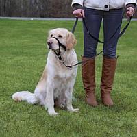 Намордник тренировочный, L-XL, 37 см, (Ремешок для шеи: 48-60 см)
