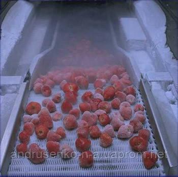 Шоковая заморозка