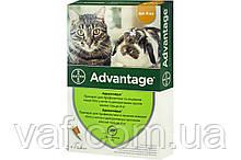 Капли на холку от блох Адвантейдж (Advatage) для котов, котят и кроликов весом до 4 кг