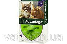 Капли на холку от блох Адвантейдж (Advatage) для котов, котят и кроликов весом 4-8 кг