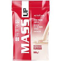Вітамінний ActivLab Mass Up, 5 кг Полуниця