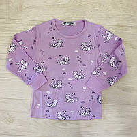 Пижама для девочек оптом, Setty Koop, 1-5 лет, арт. PJM1009, фото 4