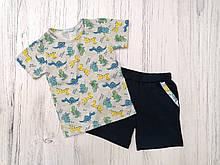 Комплект літо, хлопчик, футболка і шорти,  Dino, сірий SmileTime