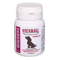 Кормовая добавка с пивными дрожжами, часныком и кальцием для щенков 70 табл/70г, VitamAll (ВитамОлл).