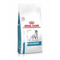 Сухий корм Royal Canin Anallergenic Dog 3 кг для собак при харчової алергії