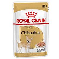 Royal Canin Chihuahua Adult 85 г х 12 - вологий корм для собак породи чихуахуа старше 8 місяців