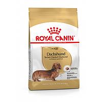 Royal Canin Dachshund Adult 1.5 кг - сухой корм для взрослых собак породы такса старше 10 месяцев