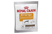 Royal Canin Energy 50 г х 30 - подкормка дополнительная энергия для активных собак