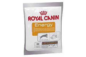 Royal Canin Energy 50 г х 30 - підгодівля додаткова енергія для активних собак