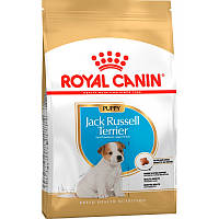 Royal Canin Jack Russel Terrier Junior 3 кг - сухой корм для щенков породы джек-рассел-терьер до 10 месяцев