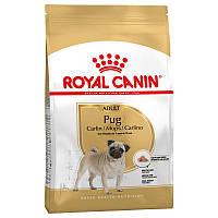 Royal Canin Pug Adult 1.5 кг - сухой корм для взрослых собак старше 10 месяцев