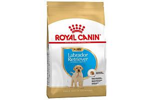 Royal Canin Labrador Puppy 3 кг - Корм для щенков Лабрадора до 15 месяцев
