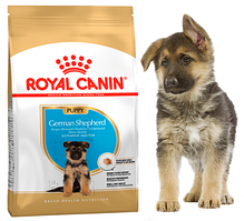 Royal Canin German Shepherd Junior 3 кг - Корм для щенков Немецкой овчарки до 15 мес.